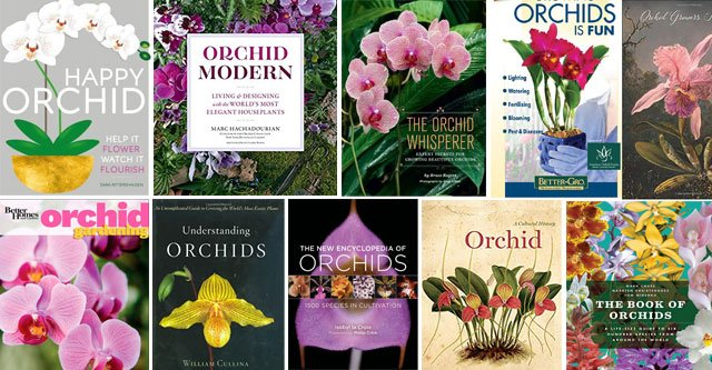 Best Orchid Books In 2020 – With Detailed Review